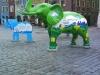 poznan-nowe-zoo-slonie