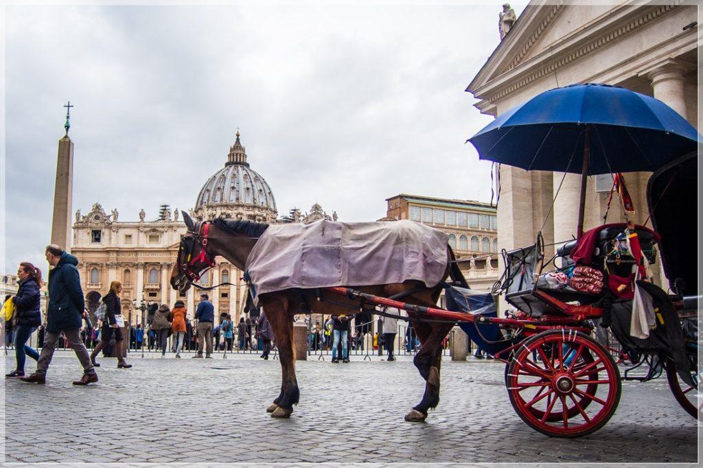 Konie w Rzymie, Watykan