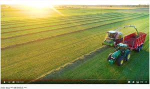 Rolnictwo wielkopolskie - zbiór traw