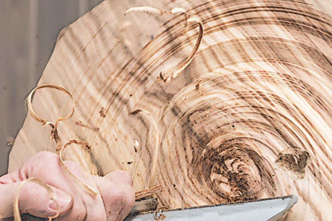 Kurs toczenia w drewnie: talerze, miski, wazony z drewna