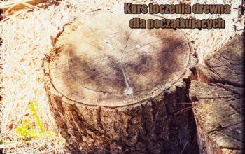 kurs toczenia drewna dla początkujących