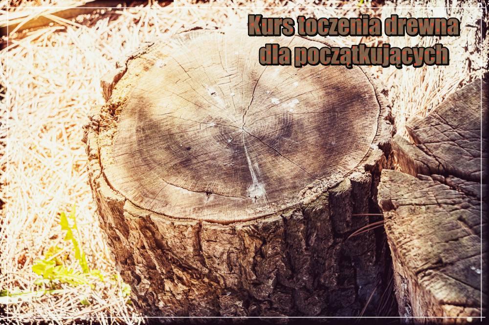 Kurs toczenia drewna na początkujących